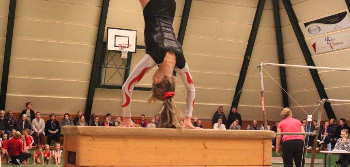 Gymnastiek/turntrainer(ster) worden?